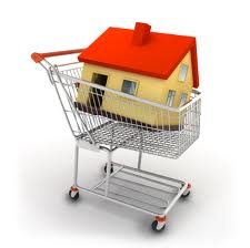 house shopping cart.jpg