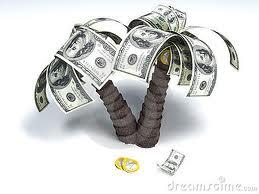 money palm tree.jpg
