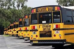school-bus-driver
